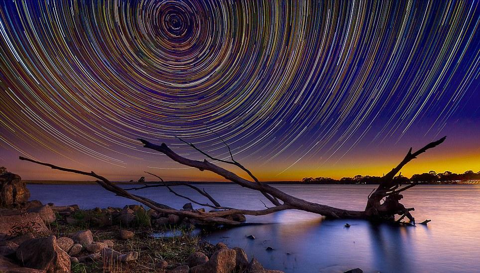 Starry Skies 4