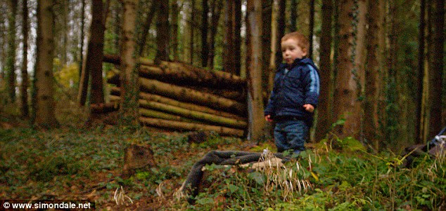 Helping hand: Simon Dale's son helps out gathering wood