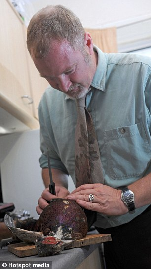 Lunch? Jonathan McGowan, 44, slices open a pigeon. He loves to eat it marinated and cooked with red wine