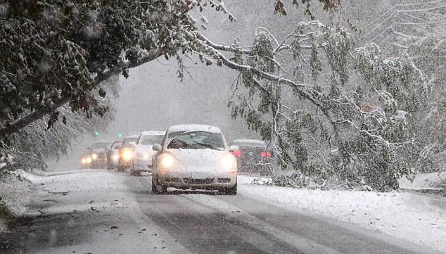 Peligrosos: Coches y unidad en torno a un árbol caído en la Ruta 303 en Valley Cottage, New York