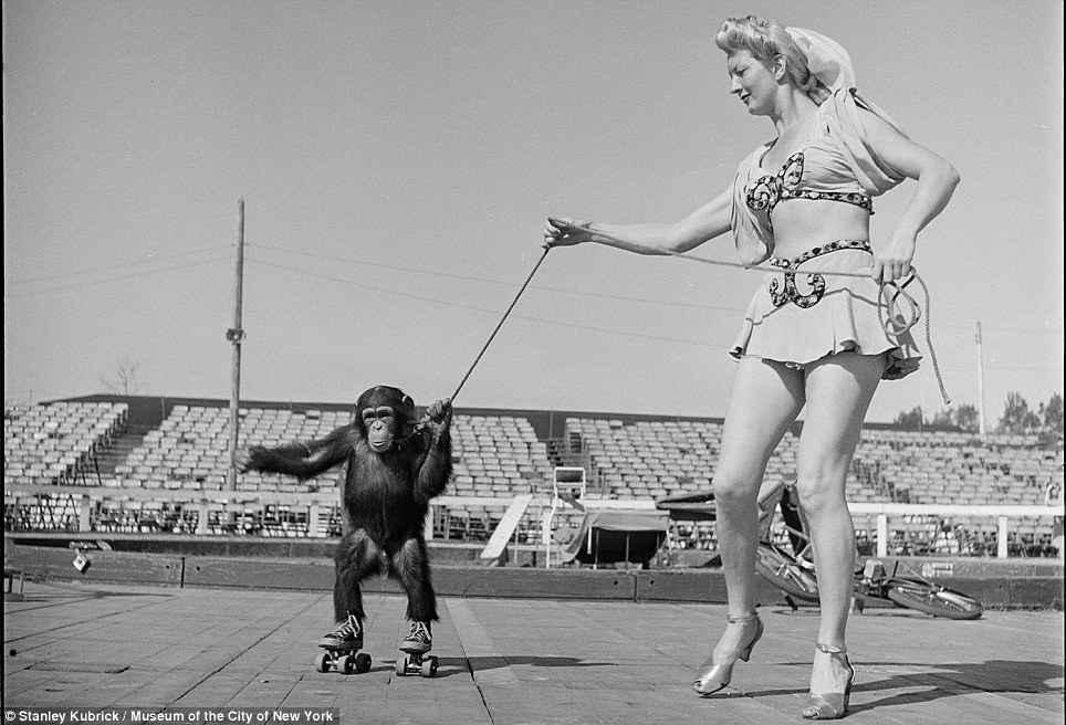 Only in New York: A circus woman holds a leash with a rollerskating monkey in 1948 ... not a sight you're likely to see today