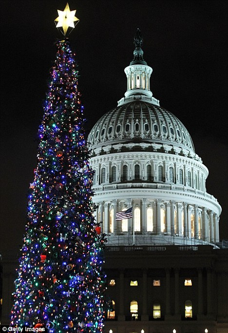 On display: The 2011 Capitol Christmas Tree is seen after it was lit by House Speaker John Boehner and Johnny Crawford, 7, of Sonora, California