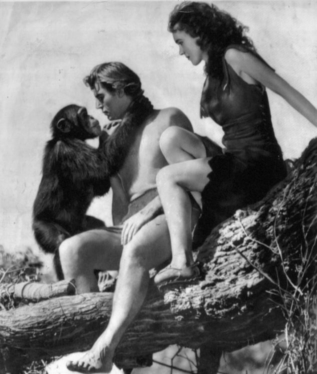 Hollywood icon: Cheetah (left) was the most famous chimp in the world. Here he starred in the 1945 film Tarzan Escapes with Weissmuller, who died in 1984 aged 79, and Maureen O'Sullivan, who played Jane