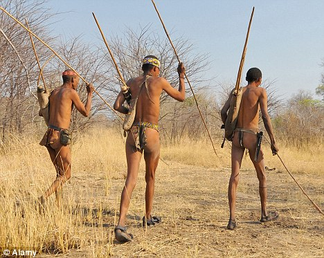 Terrorised: The strange animal has been spotted by villagers and tribesman in northern Namibia