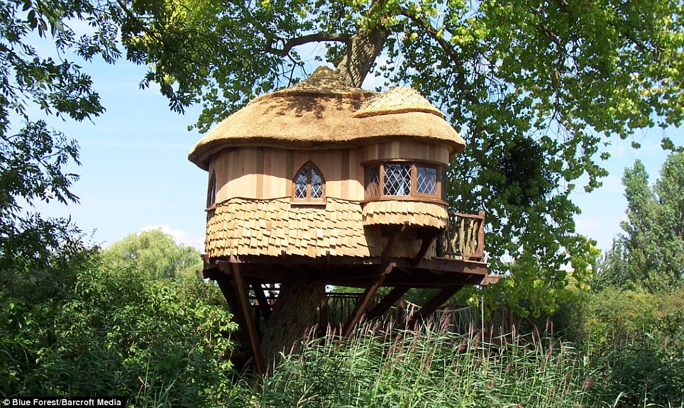 Above it all: This tree house is created on behalf of one of Britain's only castle hotel, Amberley Castle, nestled in the lee of the South Downs
