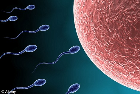 Key factor: Three large-scale studies have highlighted the importance of mistakes in the DNA of eggs and sperm to the development of autism