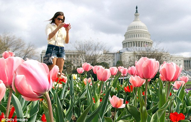 Tiptoe through the tulips: Though the warm weather brought tulips and cherry blossoms to DC early, economists say the warm weather could have falsely inflated the economy