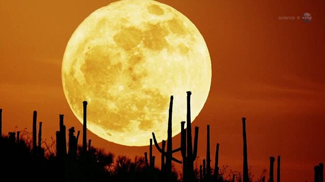 Image result for We are about to see the biggest and the brightest super moon of the 21st century
