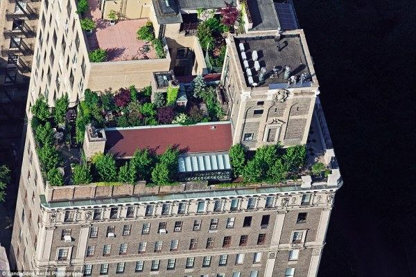 rooftop garden manhattan new york New York's secret skyline: Amazing aerial shots give rare