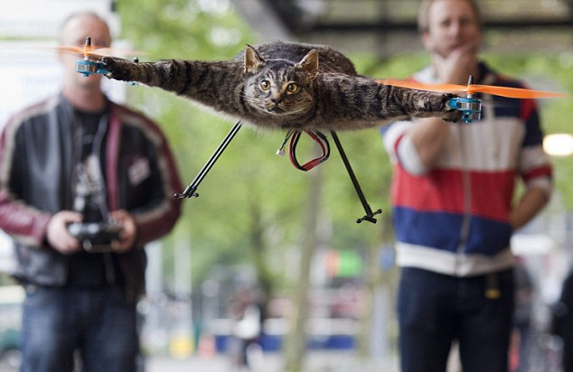 Paws for thought: Cat Orville was turned into a helicopter by his artist owner Bart Jansen, pictured right,after he was run over by a car