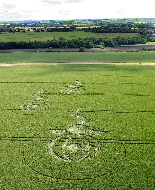 Dramatic: The 240ft long 'Ocean Sunfish' design in Woodborough Hill is just one of a number of designed that have cropped up in recent weeks in Wiltshire