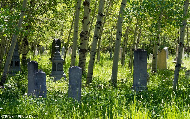 Scene: The stone fell on Carson in Glenwood Cemetery in Park City, Utah during a family trip