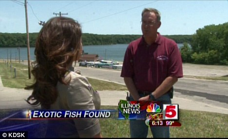 Lake superintendent Jim Cadwell reminded everyone that the pacu is primarily a vegetarian fish