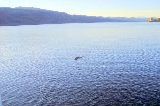 Evidence? Mr Edwards' picture that he claims proves the existence of Nessie