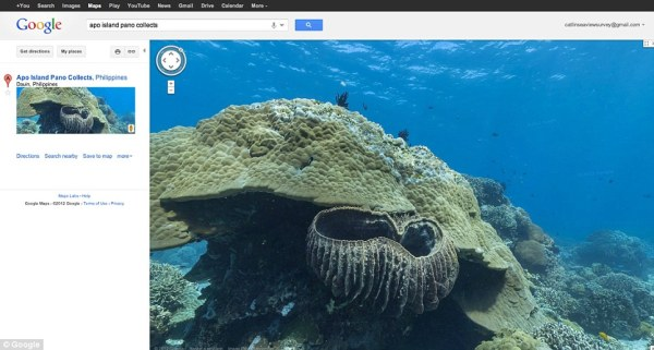 Google goes underwater with virtual tours of the world's ...