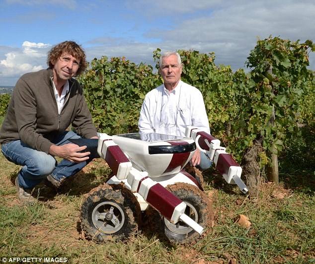 Christophe Millot (right) and Guy Julien pose in vineyards with the Wall-Ye V.I.N. robot near Chalon-sur-Saone
