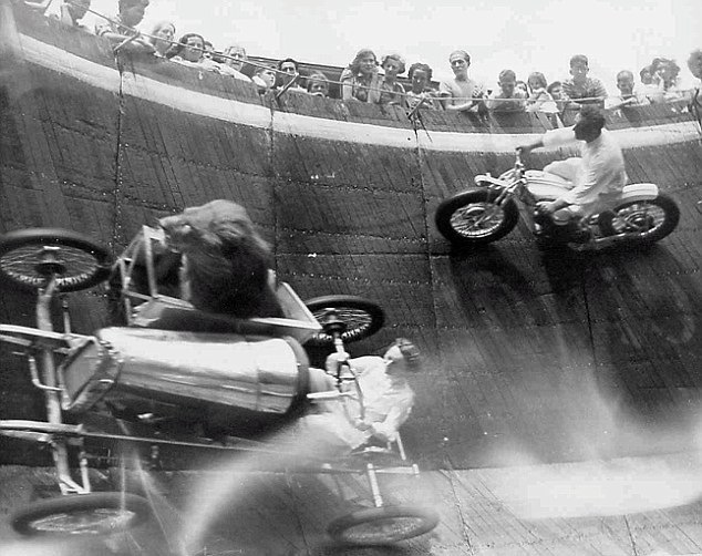 Dangerous: A dare devil circles around the wood board motordrome with a lion in his cart