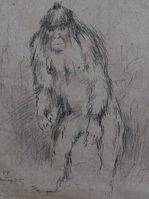 On the prowl: A sketch of what a Yeti might look like