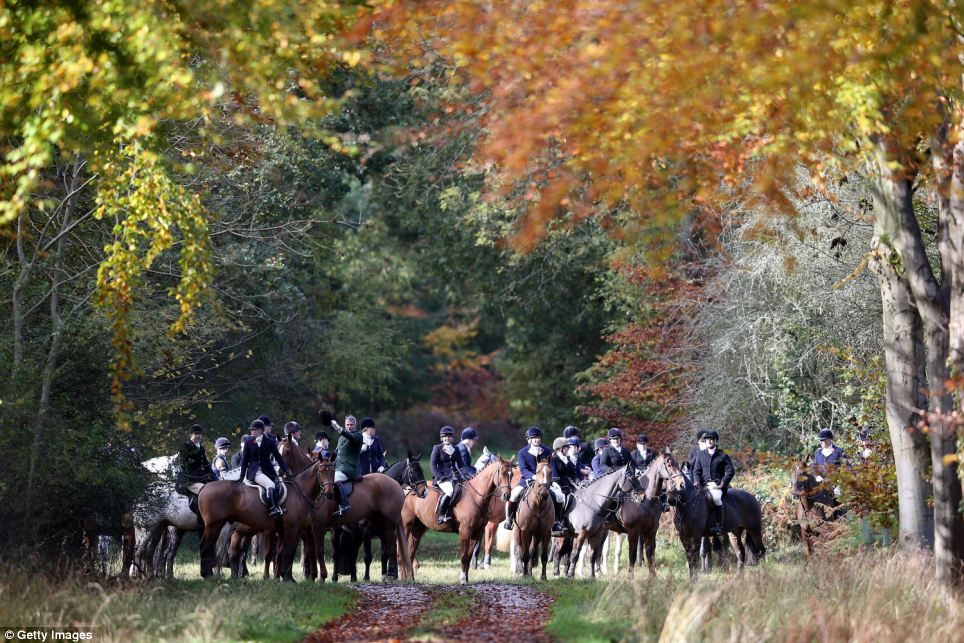 Riders gather and plan the hunt in a clearing in the estate's grounds