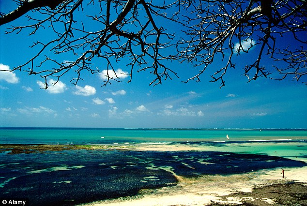 Lucrative: Desires for land along Kenya's Indian Ocean coastline (file picture) are allegedly causing a rise in 'witch lynchings' by residents to intimidate their elderly relatives who own the title deeds of desirable sites