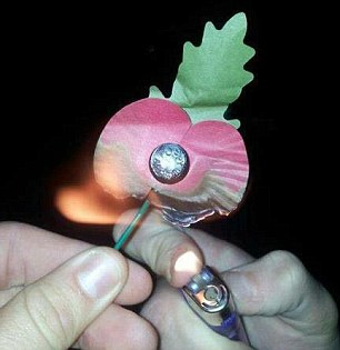 The image of a Royal British Legion paper poppy being held to a cigarette lighter was posted online on Sunday
