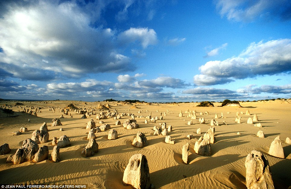 The Peculiar Pinnacles: (Nambung National Park, Western Australia) These amazing natural limestone structures, some standing as high as five metres, were formed approximately 25,000 to 30,000 years ago after the sea receded and left deposits of shells