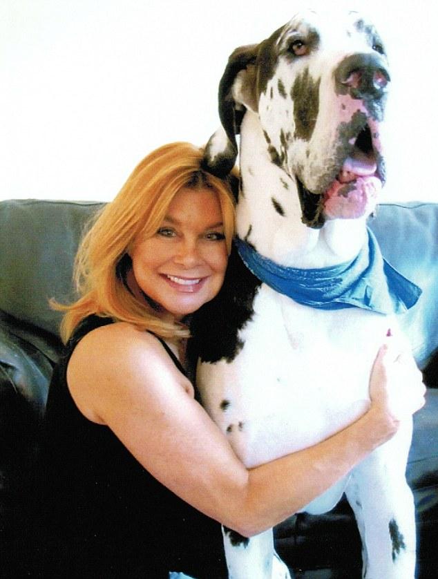 Happier times: Losing Great Dane Boris has left Jilly Johnson bereft