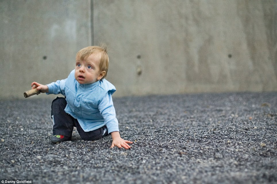 Baby steps: Nathaniel, whose family is from Canada, takes a tumble as he plays in a New York park