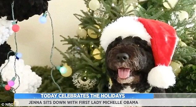 Muse: Mrs Obama said the family's dog, Bo, pictured was always a big part of the Christmas celebrations