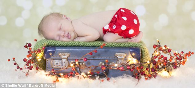 Christmas treat! A newborn baby sleeps on a suitcase in a festive scene that will warm the heart of anyone