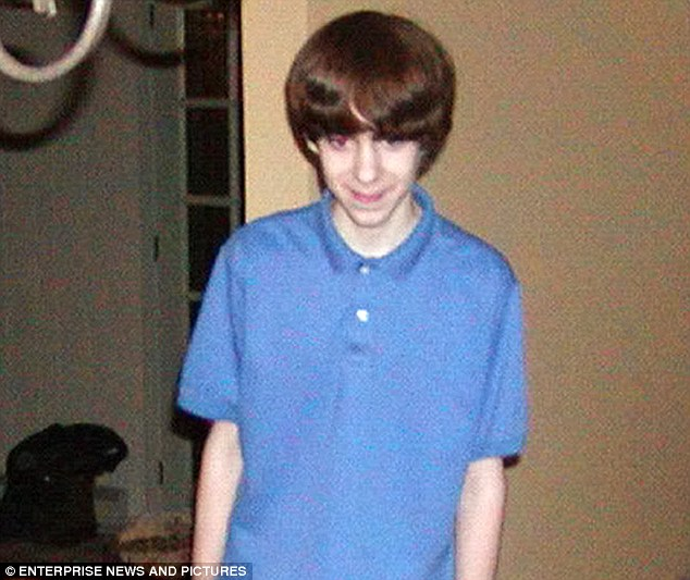 Killer: Adam Lanza opened fire at Sandy Hook elementary school and killed 20 schoolchildren and six adults