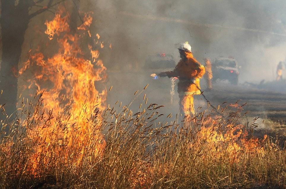 Australia Wild Fire.