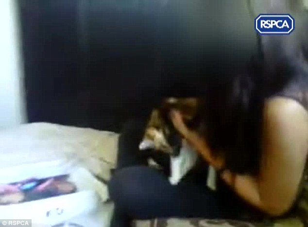 Caught on camera: The girls were fined £85, sentenced to a nine-month referral order and disqualified from keeping animals for a year