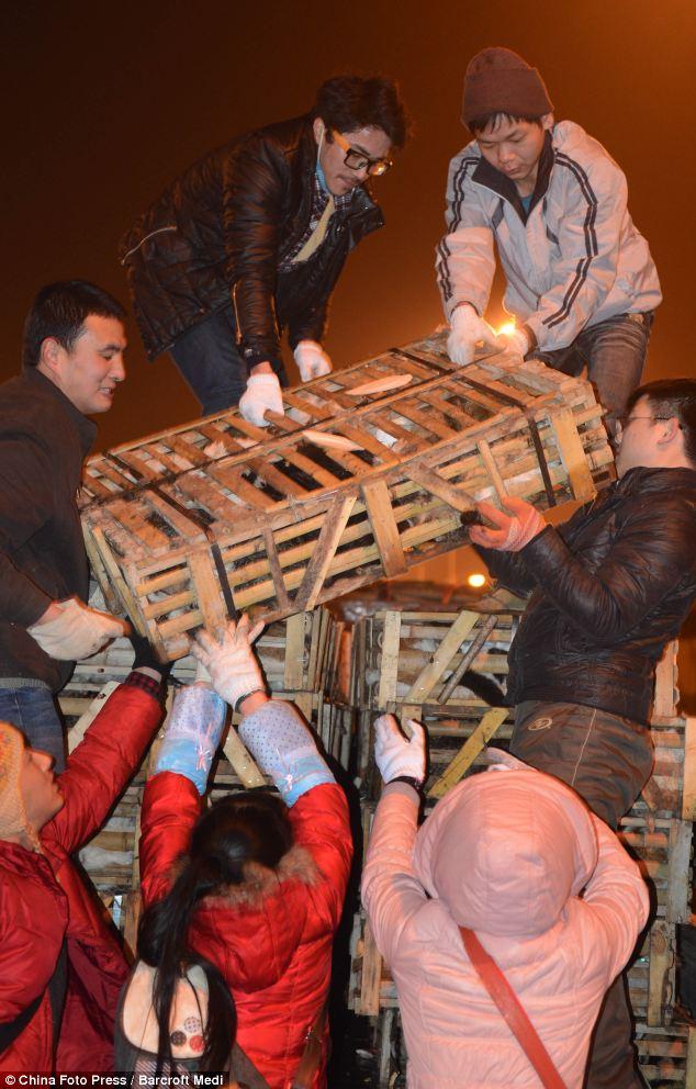 Changsha road crash