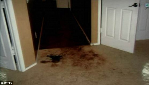 Crime scene: Photographs shown in the murder trial of Jodi Arias show the crime scene at Travis Alexander's home in Mesa, California after his body was found