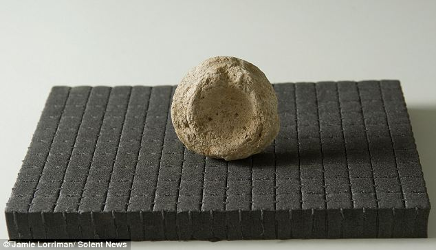Ancient: An article in the British Medical Journal by a noted French pathologist said that examples of the stones - known as 'pessoi' - had been unearthed in excavations of latrines across the classical world