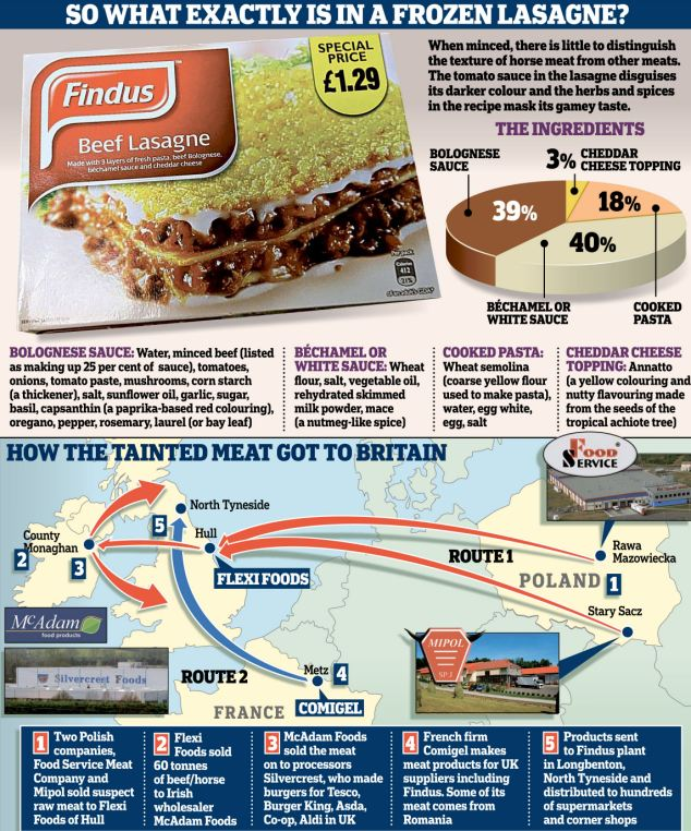 findus graphic.jpg