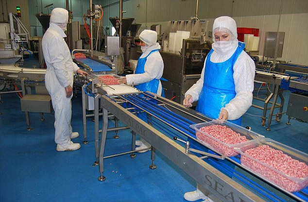 The Doly-Com Abattoir in Roma, Botosani County, north east Romania which is the source of the horsemeat at the centre of the scandal