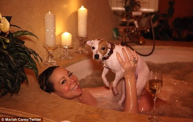 Is that really hygienic? Mariah Carey was joined in the bath by her dog Jill E Beans as she prepared for a Valentine's celebration with husband Nick Cannon