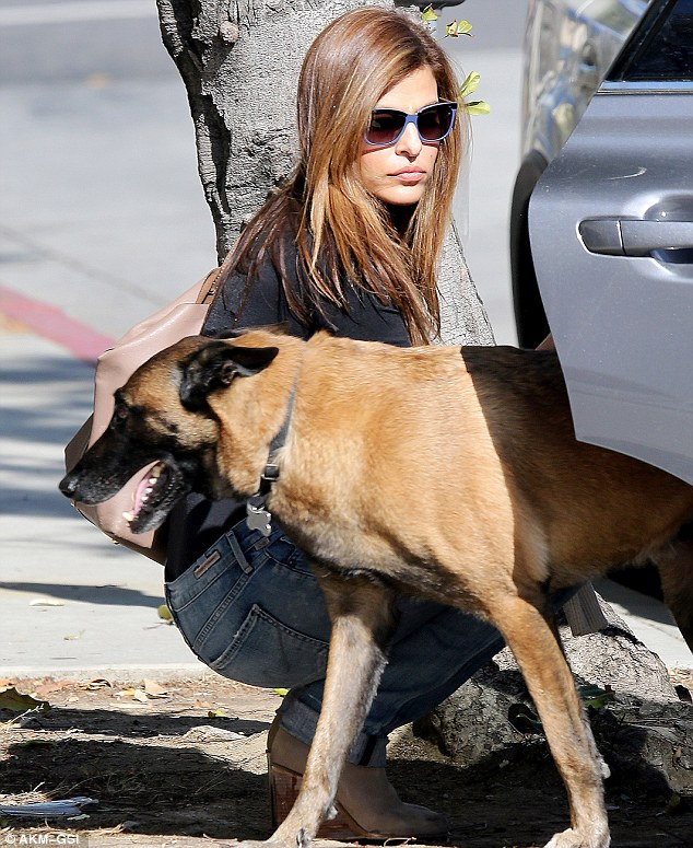 Trusty companion: The actress was taking her dog Hugo, a Belgian Malinois, for a walk