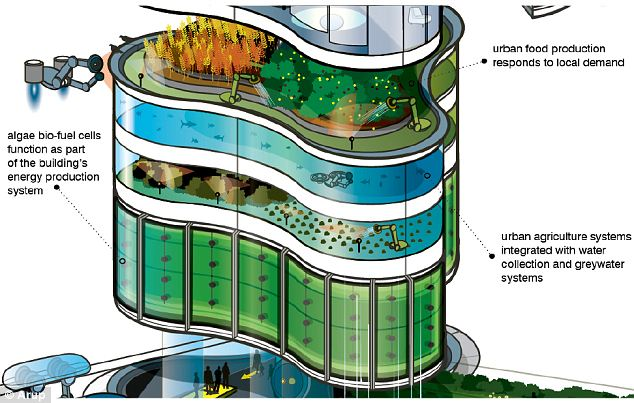 Green architecture: The report's proposals include high-rise urban farms which can respond to urban demand, and algae-filled units which are able to grow bio-fuels to meet the needs of the community