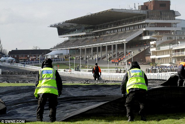 Freezing: Groundstaff remove some of the 65 acres of black insulation to help protect the ground from the overnight temperatures which plummeted to -6