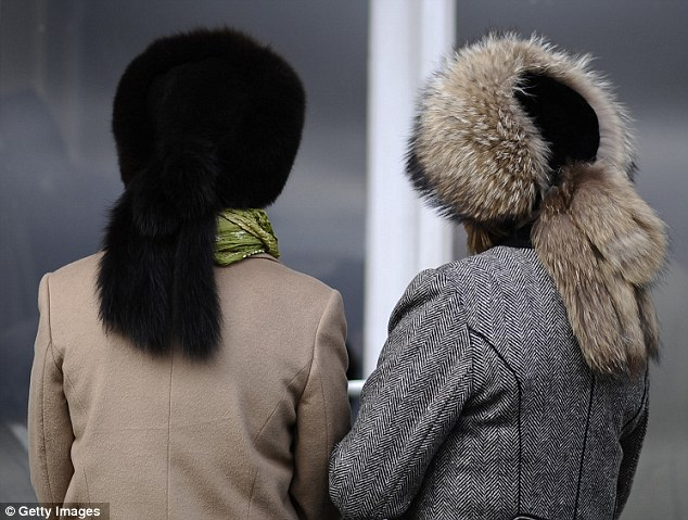 Matching: Fur hats were all the rage at a very chilly Cheltenham Festival today
