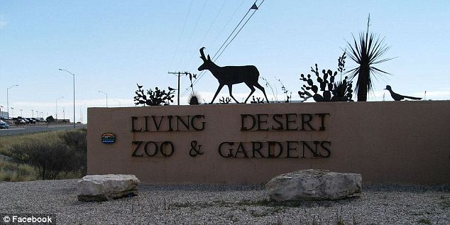 The incident happened at the Living Desert Zoo & Gardens State Park in Carlsbad, New Mexico, on March 18