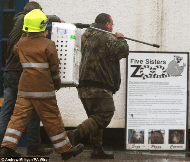 Firefighters and vets carry an animal box away from a fire in the reptile house at the Five Sisters Zoo at Polbeth, West Calder