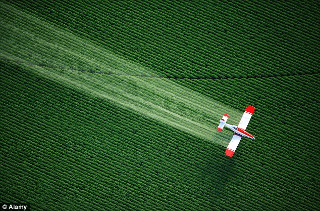 Alarming find: Residues of glyphosate, which farmers spray directly on crops in the form of Roundup, has been found in food