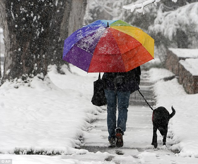Splash of colour: The winter storm has removed all traces of spring colour from this street in Colorado, save for this umbrella