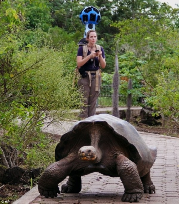Google goes to the Galapagos Islands: firm reveals ...