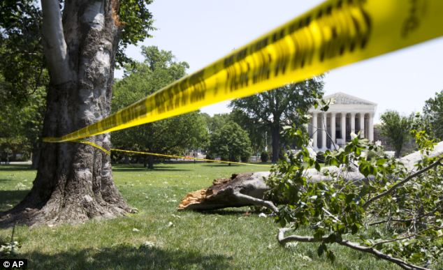 Weather experts have warned tree-toppling winds are on their way to the Mid-West. Here an American Beech tree is down on Capitol Hill grounds in Washington across from the U.S. Supreme Court after a powerful storm swept across the Washington region