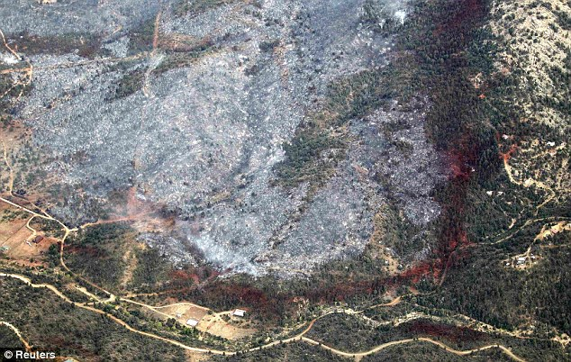 Scorched earth: An aerial view of a strip of fire retardant near Yarnell, Arizona separating the burned area from the green area is seen on July 1, 2013